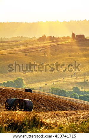 Landscape Tuscany in summer