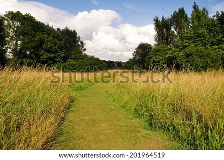 Landscape View of a Grass Pathway through a Green Field - stock photo