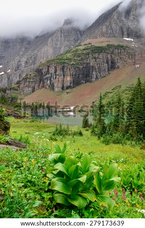 Landscape view of alpine meadow and mountain lake in Glacier NP, Montana, USA - stock photo
