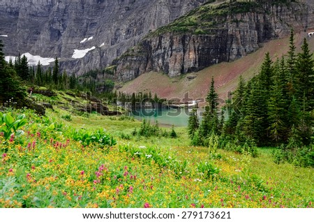 Landscape view of alpine meadow, mountains and lake in Glacier NP, Montana, USA - stock photo