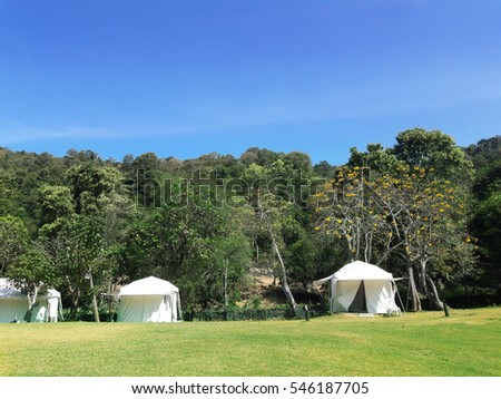 Landscape view of green and yellow grass yard with white canvas cottage tents near natural forest in sunny day of spring time.Background image of a resort on tourist attraction mountain in country.