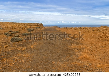 Landscape view of small bushes on coastal cliff at Petrified Forest Walk, Cape Bridgewater in Victoria, Australia - stock photo
