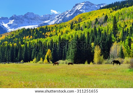 landscape view of the colorful alpine scenery with snow covered mountains during foliage season - stock photo