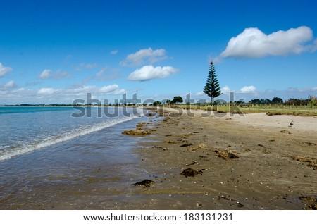 Landscape view of Tokerau Beach in Karikari peninsula in Northland, New Zealand. - stock photo
