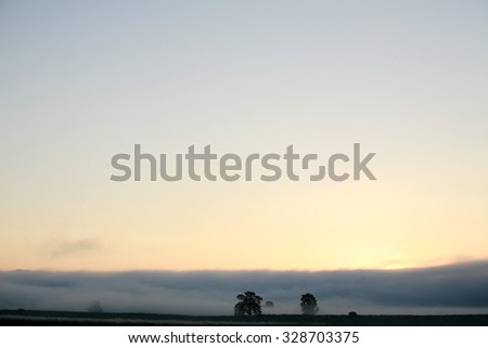 Landscape view of trees in the misty clouds on the sunrise sky background - stock photo