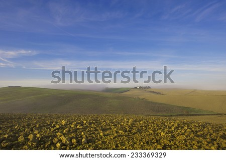 Landscape view of Tuscany, Italy. - stock photo