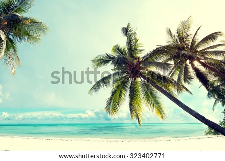 Landscape vintage nature background of coconut palm tree on tropical beach blue sky with sunlight of morning in summer, retro effect filter - stock photo