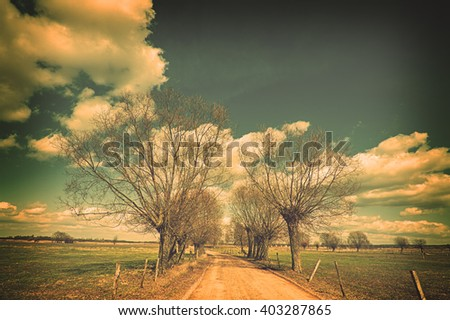 Landscape - willow trees, road to pasture. Spring time. Narew river valley, Poland. Blue filter added. - stock photo