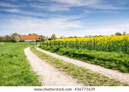 Landscape with a country road to a farm at a rape field - stock photo