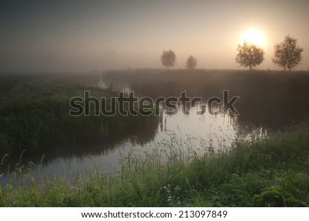 Landscape with a creek in the mist on a misty morning - stock photo