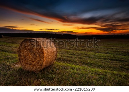 Landscape with a field full of hay bales at sunset - stock photo