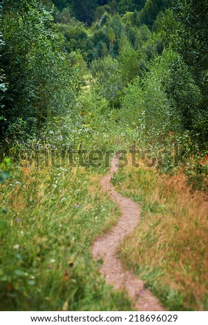 Landscape with a hiking footpath in the forest - stock photo