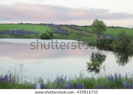 Landscape with a view of the lake and field at sunset - stock photo