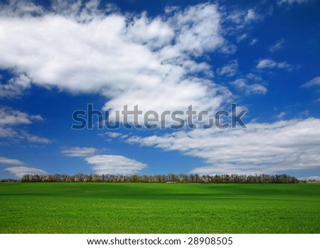 Landscape with blue sky and green herb