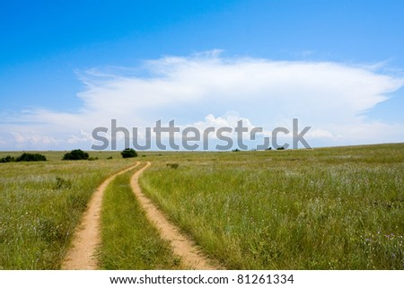 Landscape with countryside road in steppe