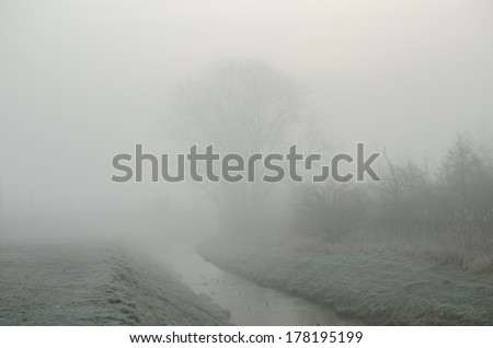 landscape with creek in foggy morning - stock photo