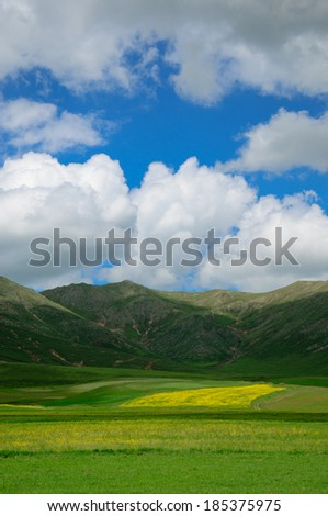 Landscape with cumulus clouds - stock photo