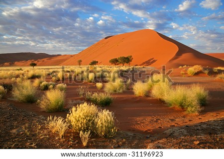 Landscape with desert grasses, large sand dune and sky with clouds, Sossusvlei, Namibia, southern Africa - stock photo