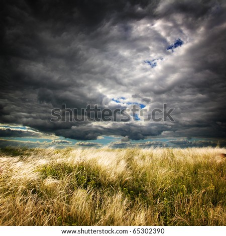 landscape with field - stock photo