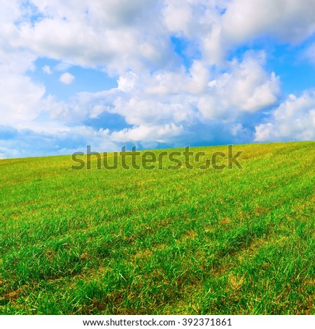 Landscape with field of green grass and blue sky with clouds. Bright summer sunny day. - stock photo