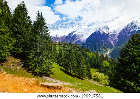 Landscape with fir-trees near Mont Blanc, Alps - stock photo
