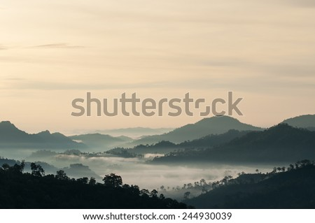 Landscape with fog. - stock photo