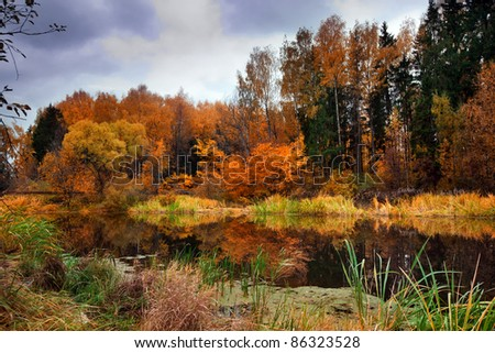 Landscape with forest  lake in autumn - stock photo