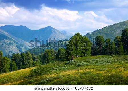 Landscape with forest mountains. Altai, Siberia - stock photo