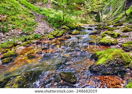 Landscape with Galbena river flowing through a canyon in Apuseni mountains, Romania - stock photo