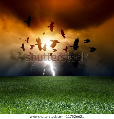 Landscape with green field, sunset, flock of flying ravens, crows in dark sky, bright lightning