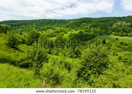 Landscape with green forest and meadow under blue sky