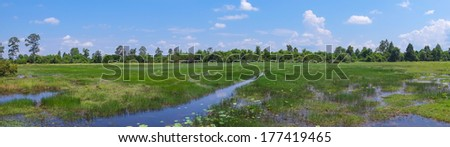 Landscape with green forest and peaceful stream, panorama - stock photo