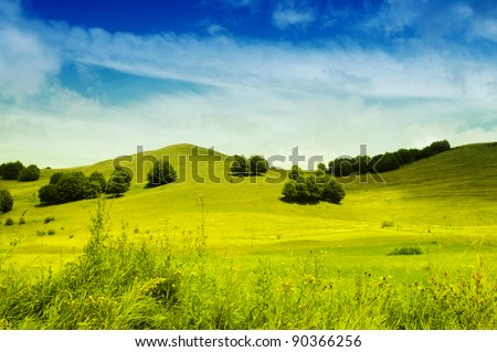 Landscape with green grass and blue sky