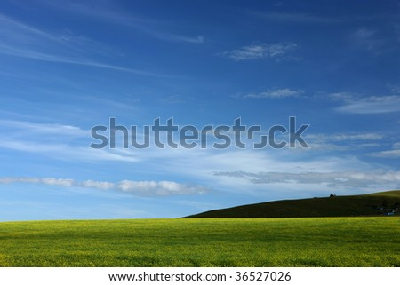 Landscape with green grass, blue sky and white clouds. - stock photo