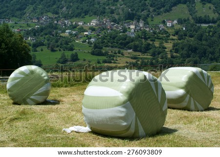 Landscape with hay bales at Olivone on the Swiss alps