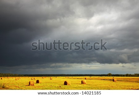 Landscape with hayfield and storm clouds - stock photo