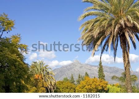 Landscape with La Concha mountain in Marbella on the Costa del Sol in Spain - stock photo
