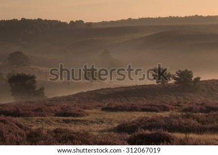 Landscape with layers - stock photo