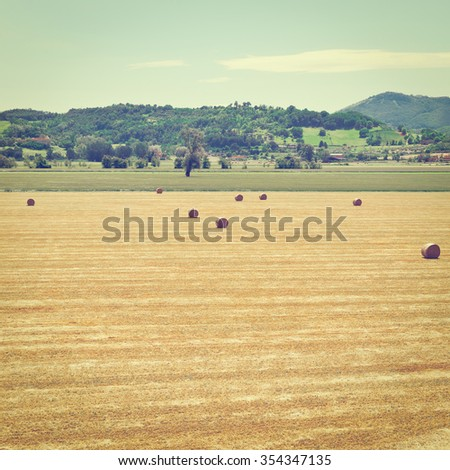 Landscape with Many Hay Bales  in Italy, Instagram Effect - stock photo