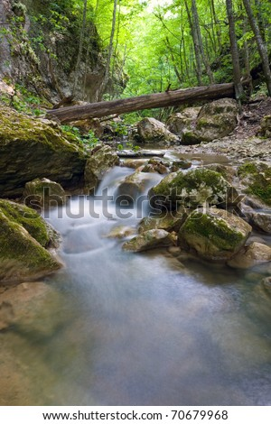 landscape with mountain stream in forest - stock photo