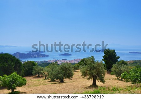 Landscape with olive trees in Skiathos - stock photo