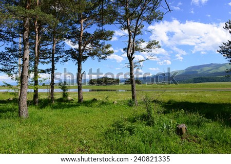 Landscape with pine trees and lake  - stock photo