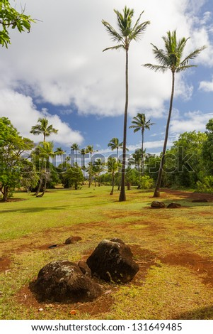Landscape with red soil, volcanic rocks and coconut trees in Kauai, Hawaii - stock photo