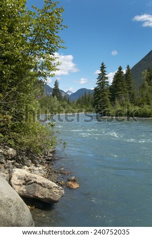 Landscape with river and forest in British Columbia. Canada. Vertical - stock photo