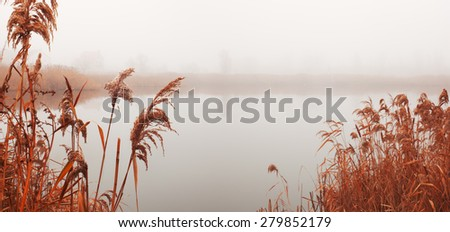 Landscape with river in fog. Reeds on river Bank. Misty autumn morning. Sad mood - stock photo