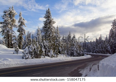 Landscape with road in winter forest - stock photo