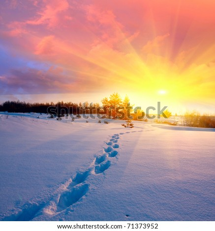 landscape with snow-path in steppe on sunset background - stock photo