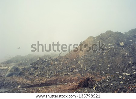 Landscape with the fog - stock photo