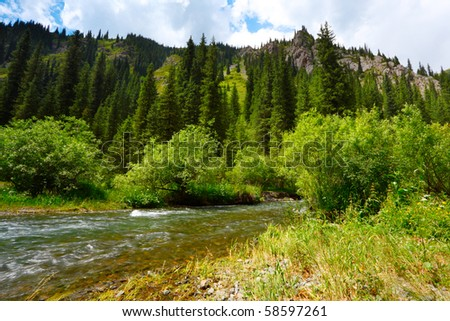 Landscape with the mountain river - stock photo