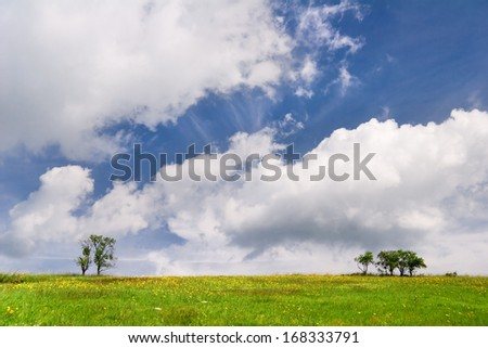 Landscape with trees and beautiful clouded sky - stock photo